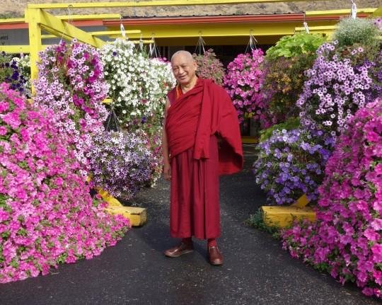 Lama Zopa Rinpoche, Washington, US, July 2014. Photo by Ven. Roger Kunsang.