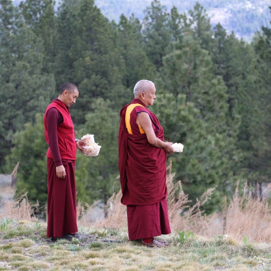 Lama Zopa Rinpoche and Ven. Sangpo at Buddha Amitabha Pure Land, Washington, US, April 2014. Photo by Ven. Roger Kunsang.