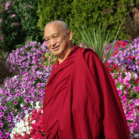 Lama Zopa Rinpoche, Washington, US, July 2014. Photo by Ven. Thubten Kunsang.